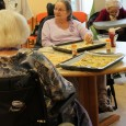 Mardi 14 janvier 2014, les résidents du Clos de l'Illmatt se sont réunis pour confectionner un bon petit repas :  Au menu : En entrée : Feuillés au fromage […]