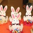 A l'occasion de Pâques, la plus importante fête de la chrétienté, un marché fut organisé au clos de l'Illmatt, le jeudi 03 avril 2014, grâce aux bricolages de Pâques confectionnés […]